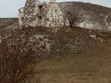 Воскресная школа из Бирюча посетила монастырь в Костамарово