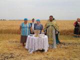 В Красненском районе состоялось торжественное начало уборки хлеба